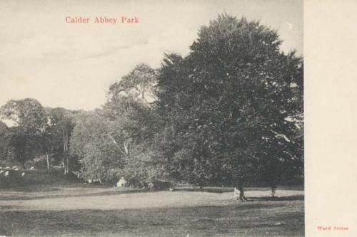 Calder Abbey Park